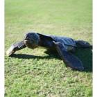 Recycled Metal Turtle Sculpture
