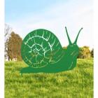 Snail Silhouette in Situ