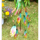 Close-up of the colourful tail feathers