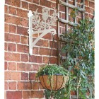 Cream Thistle Design Hanging Basket Bracket Mounted on a Garden Wall