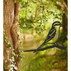 Great Grey Shrike Tree Spike in Situ