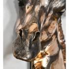 Close up of detailed giraffe nose