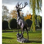 giant stag standing on rock in estate garden