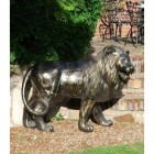 Bronze Finish Lion Sculpture (Looking Right)