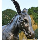 Close up of Donkey's face with reins