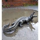 Baby Alligator Sculpture
