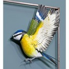 Hand-Painted Blue Tit Wall Art