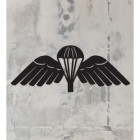 Black 'Parachute Wings' Badge in full