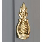 Pineapple door knocker on a grey door