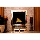 Belgravia Polished Brass Fire Front