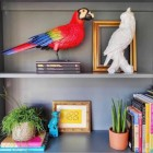 Red Parrot Ornament in Situ