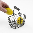 Orchard Collection Wire Basket with Wooden Handles
