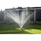 """""""Fat Frog"""" design Garden sprinkler/Lawn sprinkler"""