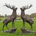 """""""Highland Prince"""" Stag on Rock Sculpture"""