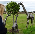 """Kusafion Safari"" Miniature Garden Giraffe Sculptures"