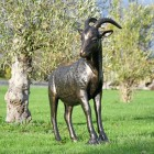 Billy Goat Garden Sculpture in Situ in the Garden