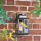 Antique Bronze Hanging Wall Light in Situ on a Garden Wall