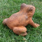 Back View of the Cast Iron Frog Sculpture