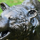 Close-up of the Detail on the Bear Cub Sculpture