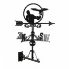 Falconry Weathervane