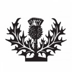 Close-up of the Scottish Thistle Weathervane Topper