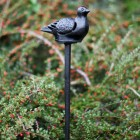 Cast Iron Dove Candle Holder In Situ
