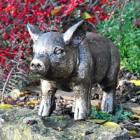 Black & Gold Piglet Garden Sculpture in Situ