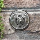 Round lion face door bell