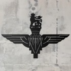 British Parachute Regiment Wall Art on a Rustic Grey Wall