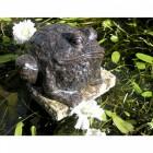 """Jabban Ponds"" Bronze Metal Toad Sculpture in situ by a Pond"