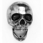 Chrome Brass Deluxe Skull (Jaw Droppingly Original)