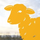 Close-up of the Head on the Curly Lamb Silhouette