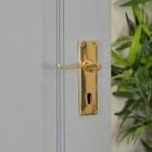 Brass Victorian Curved Handle Deluxe on Grey Door in Situ