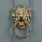 Large Lion head door knocker on grey door