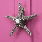 Bright Chrome Star Fish door knocker on pink door