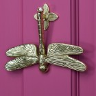 Dragon fly door knocker mounted on pink door
