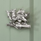 Bright Chrome Dragon door knocker on green door