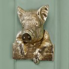 Polished Brass Pig door knocker on green door