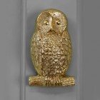 Polished Brass Owl Door knocker on Grey door