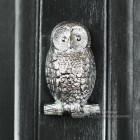 Bright Chrome Owl Door Knocker in Situ on a Black Door