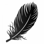 Feather Wall Art in a Black Finish