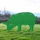 Green Female Pig Silhouette