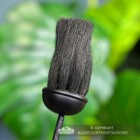 Close-up of the Brush