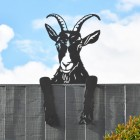 Goat Leaning Fence Topper in Use