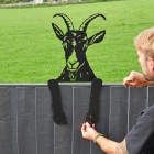 Goat Leaning Fence Topper to Situ