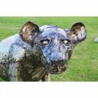 """""""Havelock"""" Hyena Garden Sculpture"""