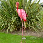 Back View of the Tall Pink Flamingo