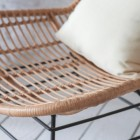"Close-up of the Winged Polyethylene ""Bamboo"" on the Dining Chair"