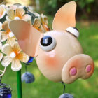 Close-up of the Face of the Pig