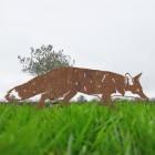 Rustic Fox Silhouette in Situ